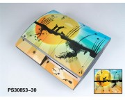 Playstation 3 Fat Vinyl Skin [Pacers Skin, PS30853-30]